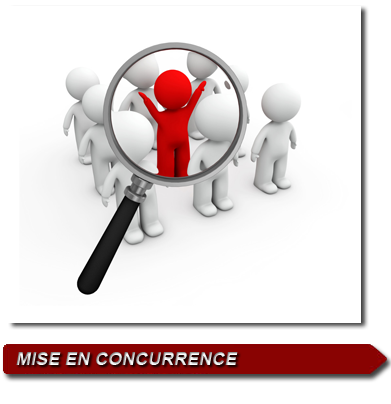 concurrence Insurance Risk Management